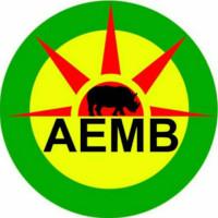 AEMB – Association des Étudiants et jeunes Maliens de Bourgogne