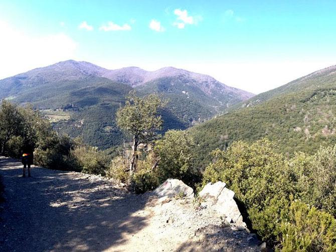 Randonnée dans le parc naturel Montseny.