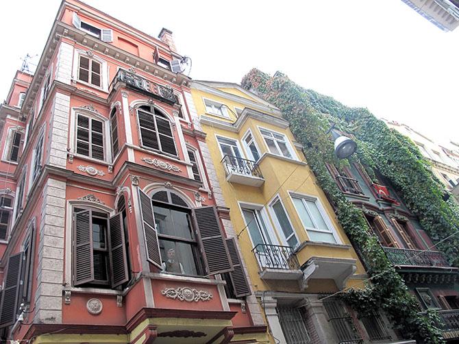 Les immeubles colorés parcourus par des branches de vignes - quartier de Cihangir.