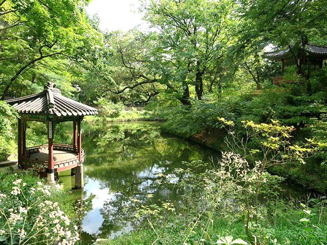 Secret garden, Changdeokgung Palace, Seoul.