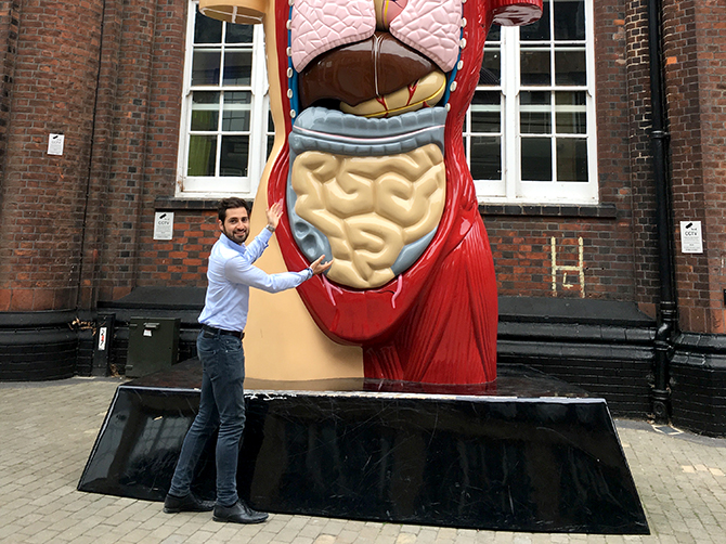 Norwich. L'intestin humain : sculpture.